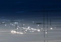 ~Drop of light~ (Amiela40) Tags: blue light sun river star soleil eau lumière drop bleu goutte étoiles hypothetical fleuve glittering scintillement abokehoflight netartii