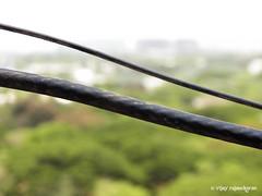 100_0291 (Vijay Rajasekaran) Tags: kodakz990