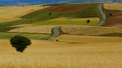 in Eastern Turkey.... on the road again (peterpeers) Tags: turkey landscape roads easternturkey thebestofday gununeniyisi