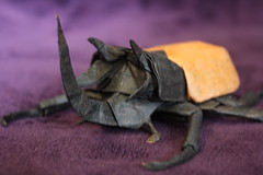 Eupatorus Gracilicornis beetle (JesseBorigami) Tags: art paper origami beetle unryu eupatorus gracilicornis