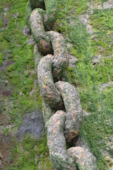 Chains II (smokeghost) Tags: green london beach chains riverside shore algae links riverthames wapping
