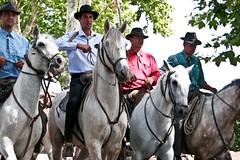 Valergues, Fte d't (kat's here) Tags: horses cheval toros chevaux abrivado gardians valergues