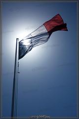 Drapeau Franais (lgDAMSphoto) Tags: soleil mat franais drapeau 14juillet tricolore bleublancrouge tendart panasoniclumixdmcft2