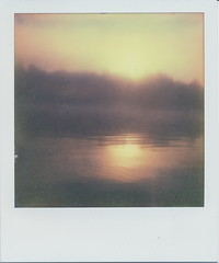 Fog. (N.Misciagna) Tags: trip morning trees camp plants sun lake mountains reflection slr film water fog analog sunrise project polaroid early cool woods canoe tip swamp integral instant pleasant 680 imposible px cotw
