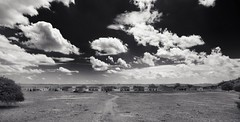 The Wild West (Tom Haymes) Tags: blackandwhite clouds texas buffalosoldiers isolation westtexas wildwest historicalsite fortdavis usnationalpark usnationalhistoricalsite uscavalry fortdavistexas usnationalhistoricalpark