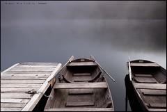 Barcos-en-Mummelsee (eredita) Tags: lago paisaje niebla fernan fondodeescritorio selvanegra germani eredita