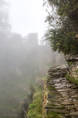 Trail to Sun Gate - 03 (cheryl strahl) Tags: peru machupicchu andes historic ancient inca trail incatrail entrance gate climb cloud mist fog flowers stones path