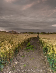 Pathway To The Sky (Steven Peachey) Tags: landscape sky clouds canon farmland northumberland canon6d ef1740mmf4l leefilters lee09gnd lee06gnd lightroom5 stevenpeachey