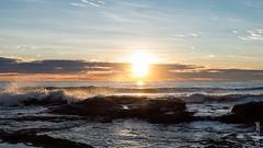 P1140541 (Pursuedbybear) Tags: alexandraheadland sunshinecoast beach sunrise waves