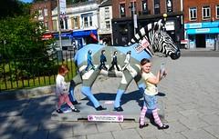 Zany Zebras come to Town (hapsnaps) Tags: hapsnaps hampshire southampton 2016 summer citycentre zanyzebras zebra zebratrail charity abbeyroadalbumcover thebeatles abbeyroad zebracrossing marwellzoo