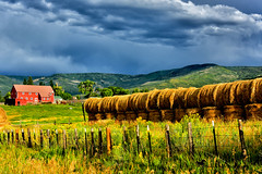 BOUNTY (Aspenbreeze) Tags: colorado farm farms farmland rural country haystacks hadrolls harvest bounty grass mountains autumn bevzuerlein moonandbackphotography aspenbreeze