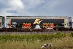 (o texano) Tags: houston texas graffiti trains freights bench benching aigo sixer badbrains