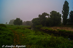 Misty morning with river (Bernsteindrache7) Tags: summer spring sony alpha 100 nature green field landscape heaven