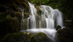 Gjain, Iceland (monsieur I) Tags: europe gjain iceland icelandic monsieuri nature roadtrip summer travel water waterfall