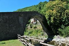 Ponte di Castruccio o Ponte di Campanelle (danielebenvenuti) Tags: outdoor ponte bridge river pietre stone canon700d reflex pistoia italy toscana italia alberi trees