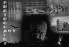 PHOTOGRAPHY ART (Pat Newton) Tags: fineart art photography creativephotography creativity photoshop