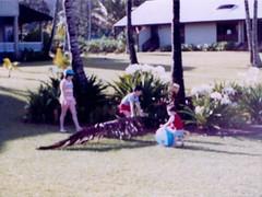 Kim Bert and Michael Moving Palm Fronds  - c1983 (kimstrezz) Tags: 1983 familytriptohawaiic1983 hanaleibay kauai kim bert michael