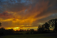 Killer Sunset Series (thefisch1) Tags: nikon nikkor kansas sunset cloud storm verdi sky horizon silhouette tree intense color colorful unique awsome approaching humidity flint hills prairie pasture twilight outdoor