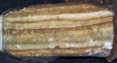 Travertine speleothem cross-section (Luray Caverns, Luray, Virginia, USA) 3 (James St. John) Tags: cave caves luray caverns virginia travertine speleothem crosssection cross section