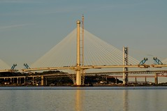 Forth Replacement Crossing (robert55012) Tags: queensferry forth replacement crossing bridge scotland