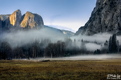 Yosemite Valley Morning Mist (Riven Imagery) Tags: 5d 5d3 3 mk mark iii canon yosemite yosemitenationalpark mist valley fog el capitan cathedral rocks morning storm clearing clouds green winter early beautifu magnificient magical stunning glorious wonderful wonderous fantastic fabulous terrific amazing dramatic outdoor landscape mountain field grass forest plain tree