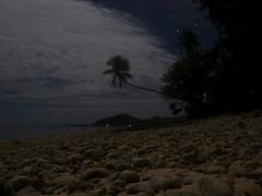 Beach in Moonlight, Kosrae, Micronesia (ebuechley) Tags: ocean island scenery pacific wildlife fsm micronesia kosrae