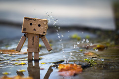 Danbo taking a shower in public (nemi1968) Tags: shadow macro reflection wet leaves oslo closeup canon shower droplets bokeh outdoor leak danbo ef100mm macro100mm canon60d canoneos60d