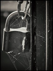 Unlock me... (Melinda Szente) Tags: old sunset blackandwhite bw sunlight detail macro texture dusty monochrome sunshine metal closeup photo rust waiting shiny alone dof close bokeh lock parts text details perspective spiderweb rusty dramatic sunny cobweb textures lonely framing shape unlock locked hungup unlockme