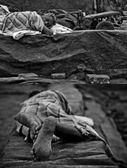 | portrait of hard life (ayashok photography) Tags: morning sleeping bw india blackwhite nikon sleep bnw tamilnadu kanchipuram brickfactory nikkor24120mm ayashok nikond300