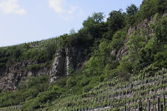 Felsen und Wein - Rocks and wine (ho.ge) Tags: rocks wine wein felsen enz roswag