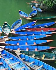 Phewa Tal Boats ( Jamie Mitchell) Tags: nepal woman lake butterfly boats scottish monsoon pokhara fewa tranquil tal rowboats