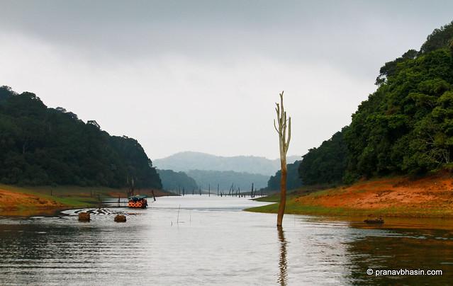 Boat Ride At Periyar Tiger Reserve, Thekkady