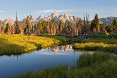 Tetons and Beaver Dam at Schwabacher Landing, Wyoming (bretedge) Tags: summer mountains reflections rockies unitedstates northamerica rockymountains wyoming tetons beaverdam jacksonhole naturephotography grandtetonnationalpark landscapephotography schwabacherlanding beaverponds scenicphotography nationalparkphotography greateryellowstone bretedge