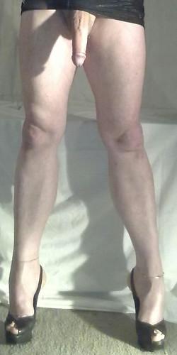 Sexy transvestite photos