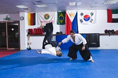 "Aikido-Mosh_16 • <a style=""font-size:0.8em;"" href=""http://www.flickr.com/photos/83186988@N03/7620219372/"" target=""_blank"">View on Flickr</a>"