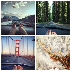 thank you Essie nail polish (Janine Graf) Tags: cameraphone red toes roadtrip traveling nailpolish essie diptic janine1968 iphone4s janinegraf