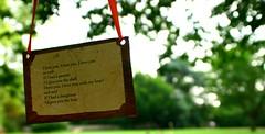 Hanging Poem. (Adam Hinett) Tags: macro tree focus funny poetry poem dof bokeh sigma shakespeare depthoffield simplicity doughnut peanut hanging warwickshire stratforduponavon sigmalens sigmaex