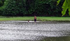 16 (shanoj.ks) Tags: boys swim village kerala ponds swiming kulam kaayal swimingboys