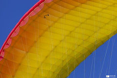 Canopy (Daniel Wildi Photography) Tags: colors sport switzerland colorful bluesky paragliding canopy advance paraglider 2012 danielwildiphotography cantonofthun