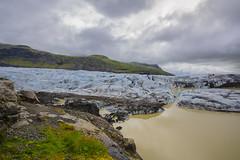 _DSC0057 (Mauro Esains) Tags: glaciar hielo agua laguna lava arena cenizas musgo aves fro islandia piedras nuves aire libre paisaje turismo