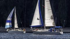 week 29 : Boat dreaming (gabor retei) Tags: canada sailboat bc burnaby portmoody