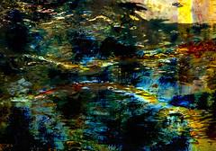Agua de riego (desde mi corazn) Tags: agua riego naturaleza color textura riachuelo fusin