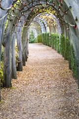 _DSC7575 (Robby68) Tags: vert marqueyssac jardin dordogne nature france soir suspendu