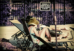 Sunbathing in the 70's (laureneveland) Tags: color film indoor landscape outdoor place pool urbanpeople summer chairs purple lomochrome vintage iso400 bush tanning bathingsuit 110 mm lens pennsylvania infrared lomography zoom lense candid people portrait swimming swim water
