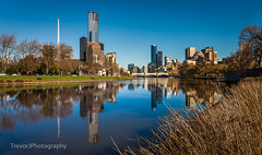 Yarra River, Melbourne (trevorjphotography) Tags: yarrariver reflection beautifulday beautifulweather bluesky warm niceday pleasant scenic scenery waterscape landscape city eurekatower princesbridge melbourne victoria australia views riverbank skyline skyscraper cbd canoneos5dmarkii ef1740mmf4lusm reeds rialto trees birrarungmarr southbank