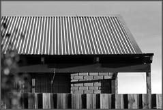 A House Across the Way   II (fotograf1v2) Tags: pakenham victoria australia winter house architecture brickhouse palingfence verandah shrub foliage evening monochrome greyscale bw corrugatedsteelroof