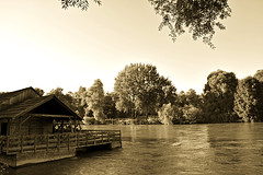 Mill on the river Mura (anvelvet) Tags: river mura croatia medimurje mill nature water tree old