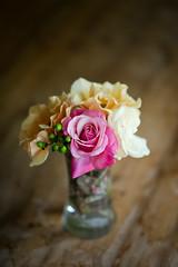 Flowers while you can still smell them (hjl) Tags: flowers petals pink rose stilllife vase samyang samyang85mmf14