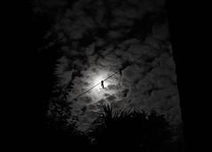 Harvest Moon 2016 - 2. Nightline () Tags: night moon moonlight blackandwhite mono monochrome bw london
