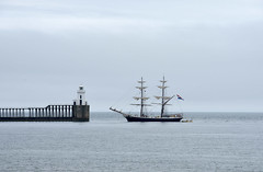 Morgensterner entering Blyth (DavidWF2009) Tags: morgensterner tallship sailingship blyth northumberland sea mist dutch